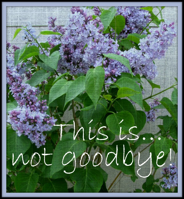 lilacs goodbye 2